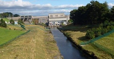 Endangered Eels Die at Ballyshannon dam